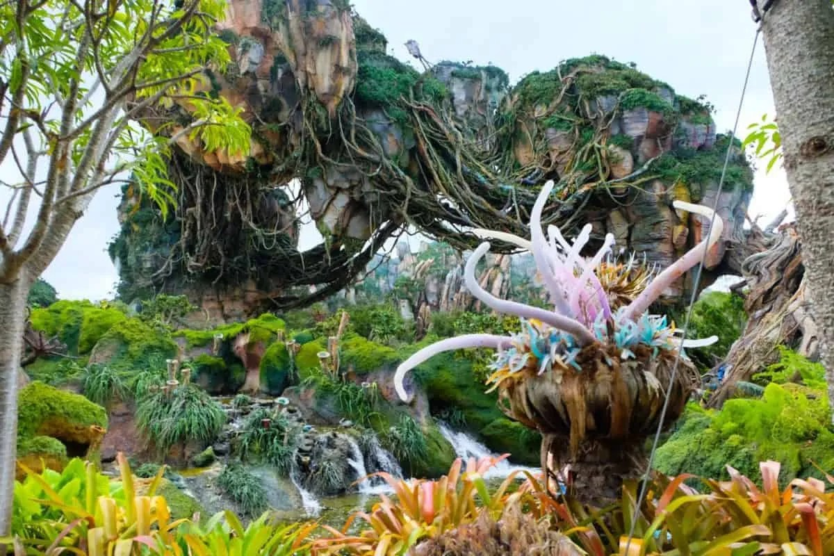 Quick and Dirty guide to exploring Pandora