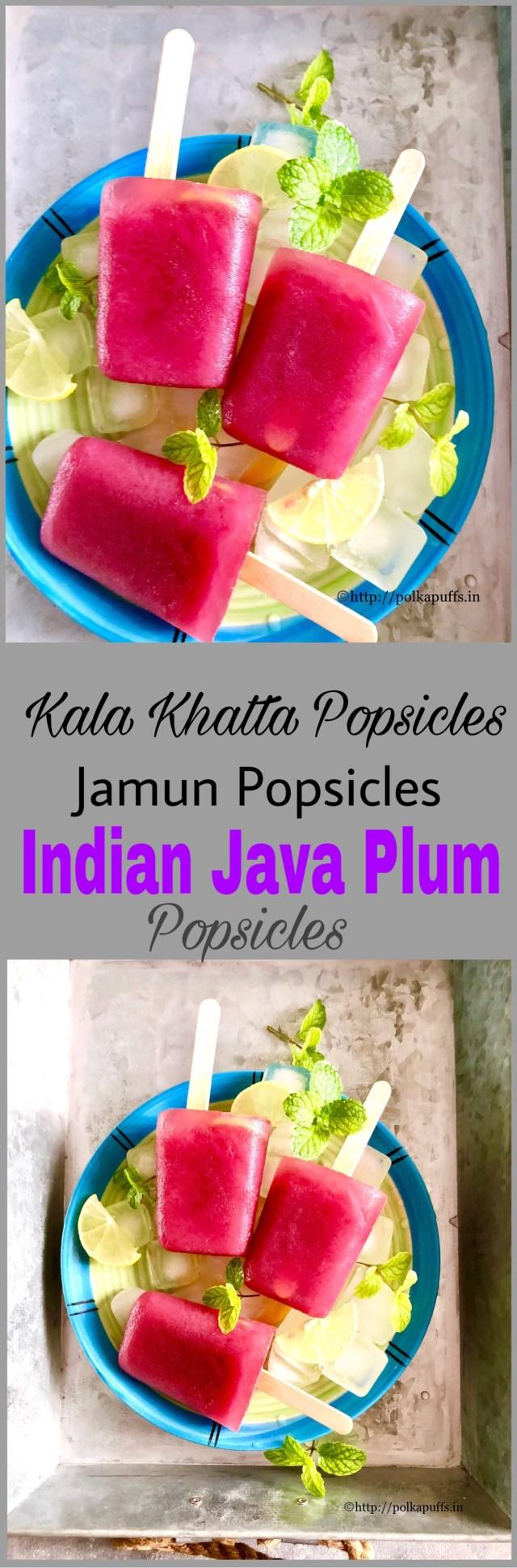Kala Khatta Popsicles   Jamun Popsicles   Indian Java Plum Popsicles