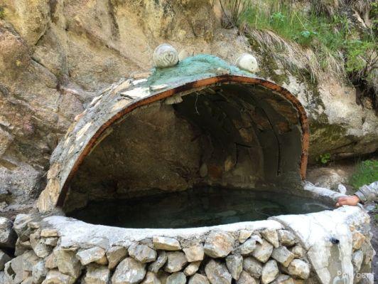 hot spring in frog form @Altyn Arashan
