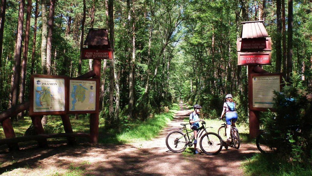Parc National de Bory Tucholskie
