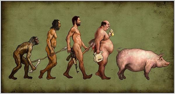 evolution-014