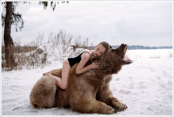 bear-stepan17