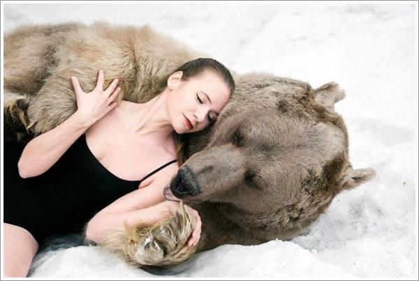 bear-stepan19