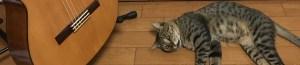 クラシックギターと猫