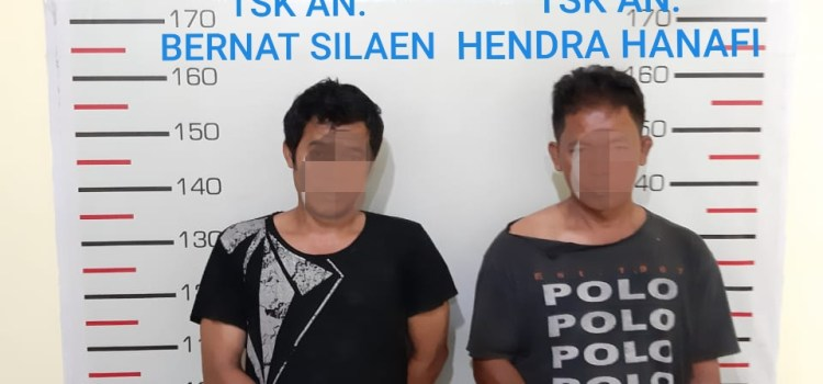 Ops Antik 2019, Satres Narkoba Polres Simalungun Ringkus 2 Tersangka Pemilik Ganja