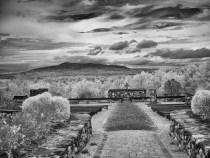 monochromeinfrared-20161030-13-25-edit-2
