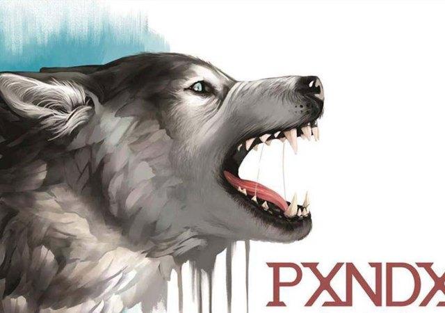 Sangre Fría Pxndx