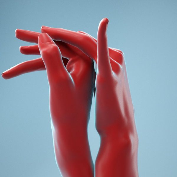 Intimate Realistic Hands