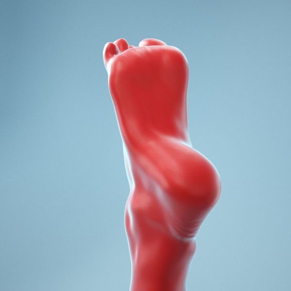 Tip Toes Heeled Realistic Foot