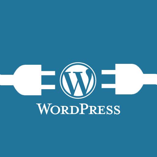 co-nen-cai-plugin-hay-khong-cai-nhieu-plugin-khien-web-hoat-dong-cham-wordPress-plugins