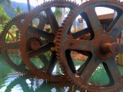 Maui Tropical Plantation Gears