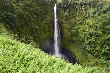 https://polymathically.wordpress.com/2014/12/16/akaka-falls-hawaii/