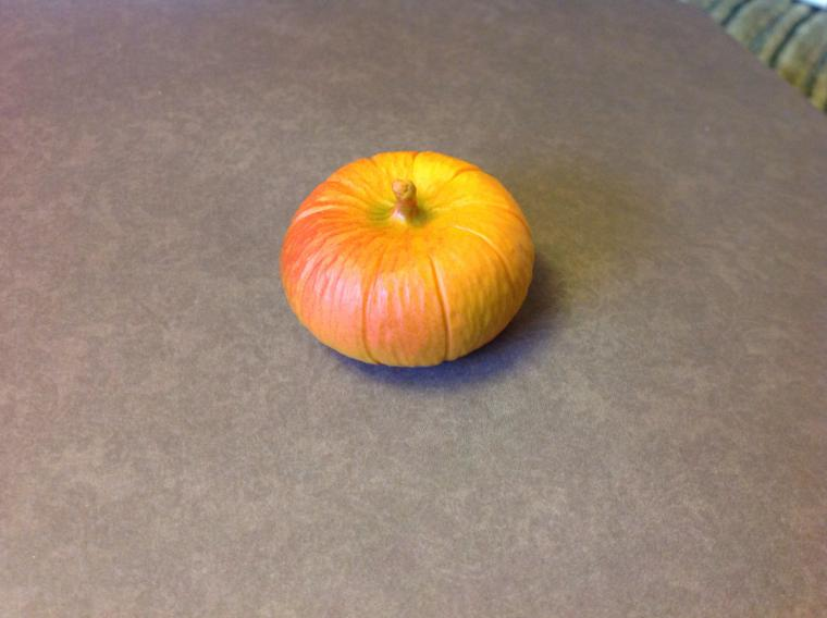 pumpkin-livemasterru