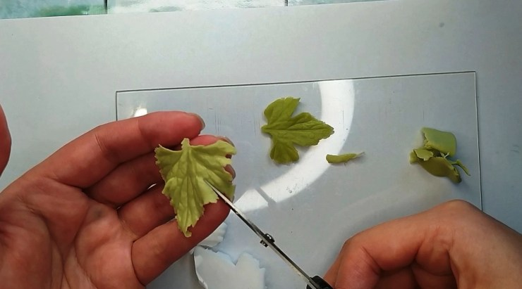 10 Anemone leaf or white and red currant leaf made from polymer clay