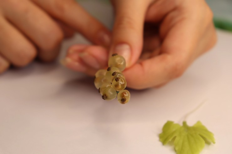 21 white currant of transparent polymer clay