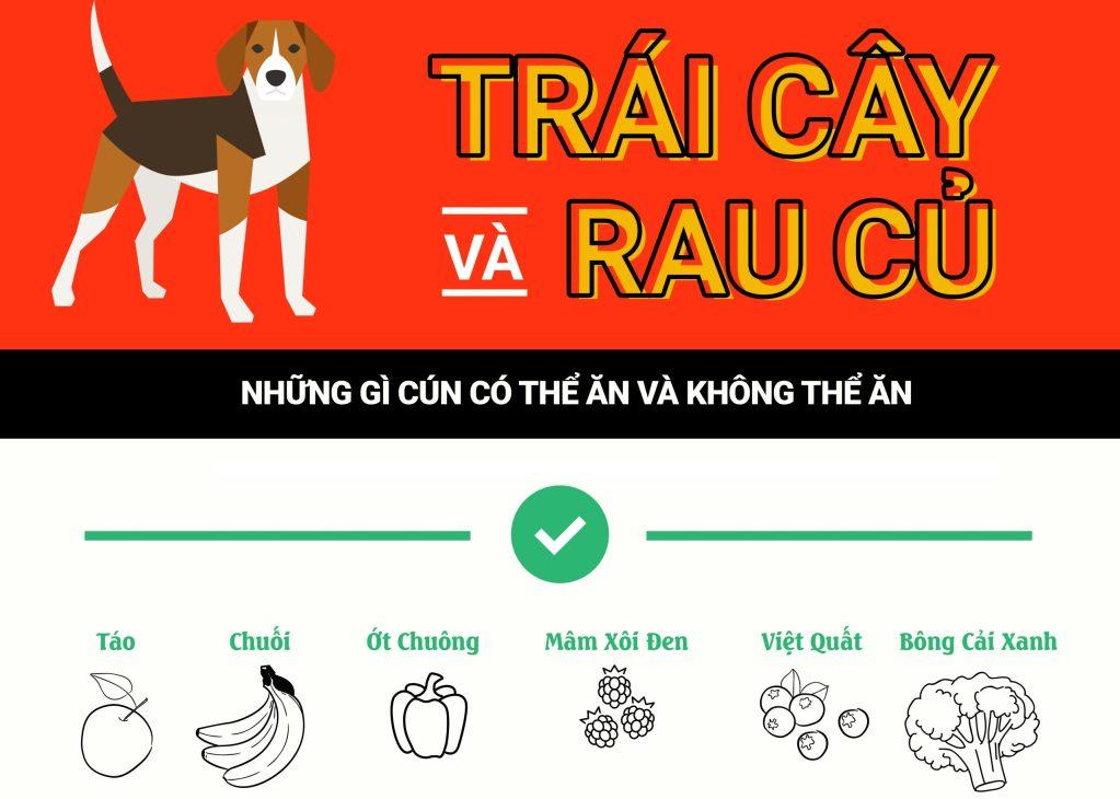 Những loại trái cây rau củ quả chó có thể ăn và không nên ăn