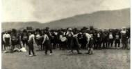 Yunanistanda bulunan Seçek yağlı güreşleri Ruşenlar Pomak köyünün[*] en eski kültür faaliyetlerinden biri. Uzun yılar bir etkinliği ayakta tutmak çok önemli. Bu etkinliğin tam olarak ne zaman başladığı bilinmiyor. Bir […]