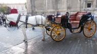 Engine size = 1 horse power.