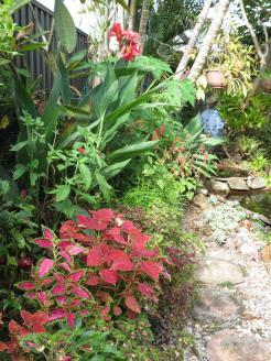 Garden March 2015 069_3000x4000
