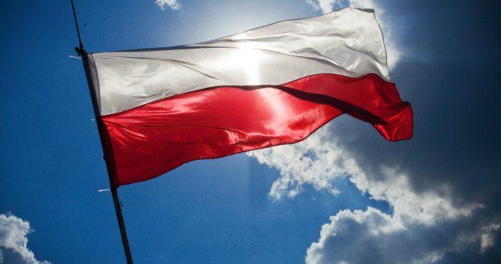 Debate político y decisión jurisdiccional: el caso de Polonia