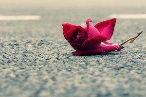 Utracona miłość