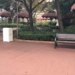 TDS☆初めての専用ゲート