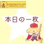 ポムポムプリン☆本日の一枚1/1