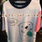 ラッコ☆ラッコTシャツを原宿竹下通りで発見!