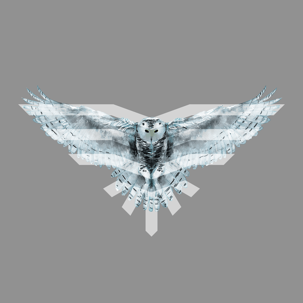Owlnest Academy logo