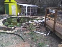 Original Pond built 1999