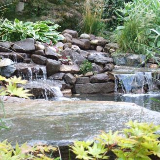 Landscape Design in CT, Water Gardens and Koi Ponds Article in CT Mag