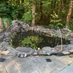 Pond Maintenaance