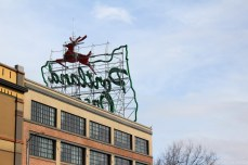 Portland's White Stag sign from behind. © Violet Acevedo