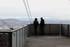 Looking out at Portland from the top of the Aerial Tram. © Violet Acevedo