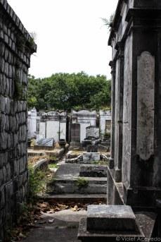 Peaking between the graves in Lafayette Cemetery. © Violet Acevedo