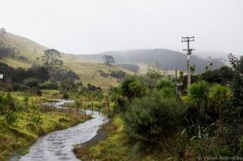 The countryside leading to Lake Waimanu. © Violet Acevedo