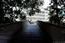 Pedestrian walkway to Auckland University of Technology. © Violet Acevedo