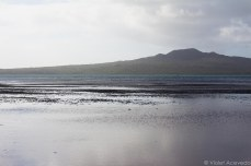 Rangitoto Island stands at the horizon. © Violet Acevedo