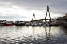 Sydney's Anzac bridge over the water. © Violet Acevedo