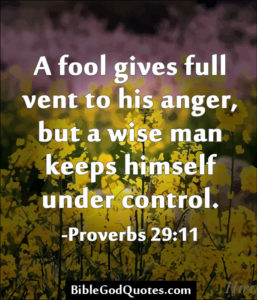 Proverbs 29