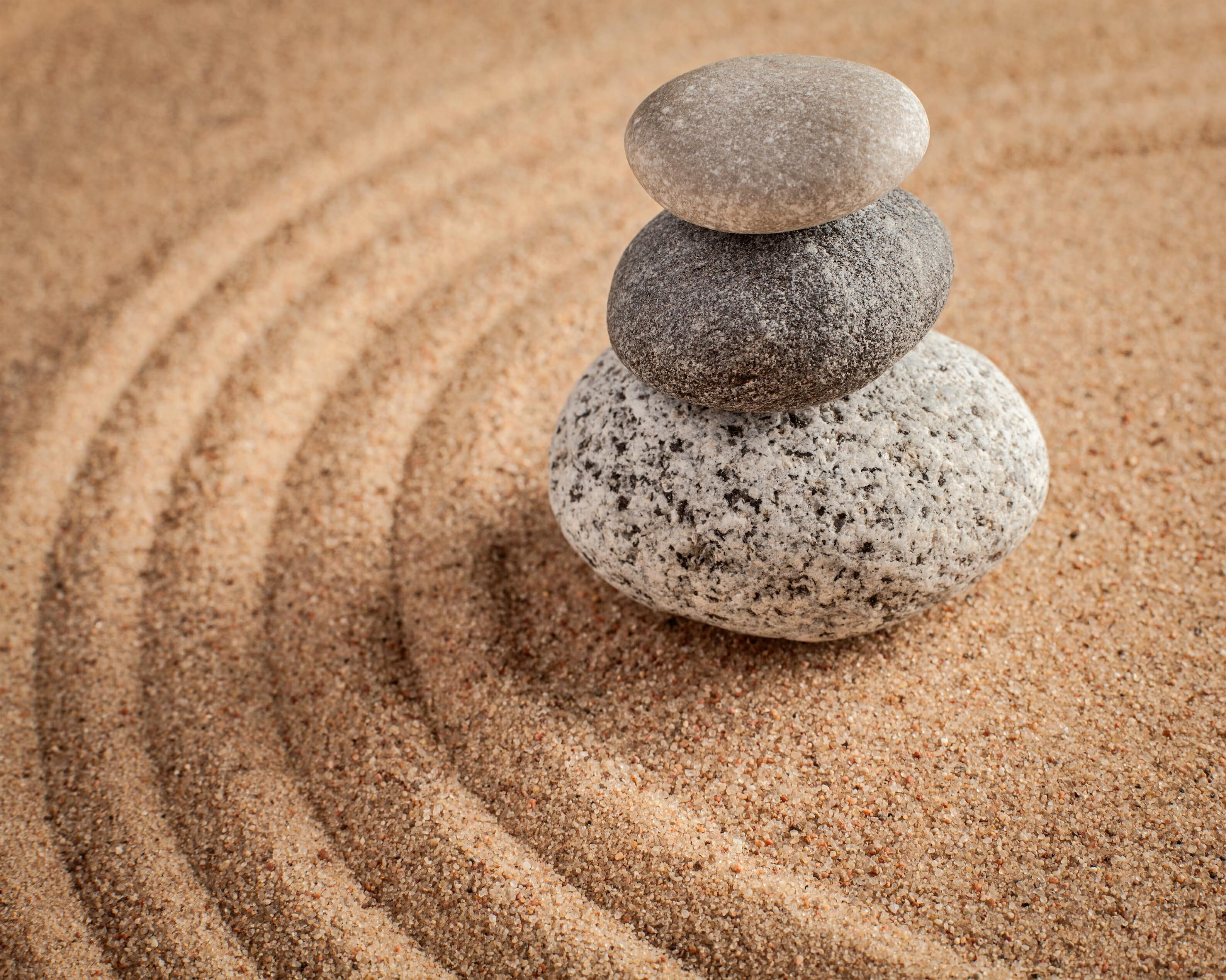 Zen Meditation Ponderings Barbarian Article