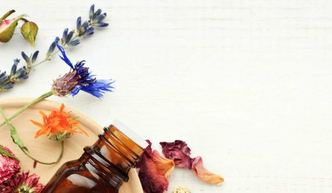 How Aromatherapy Can Make Your Household Feel Calm