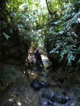 Going through the canyon stream