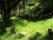Brecon Beacons National Park, Wales, UK, Britain