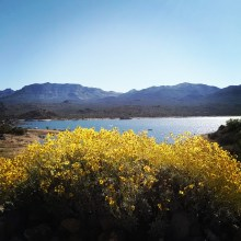 Bartlett Lake Arizona
