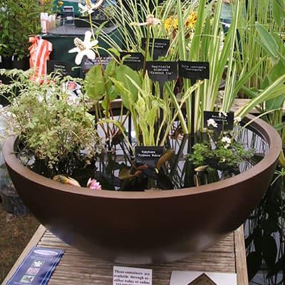 best patio pond container mini pond