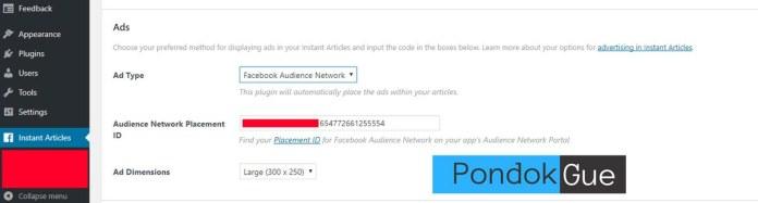 Masukkan ID Iklan Audience Network Pada Setting Plugin di Web