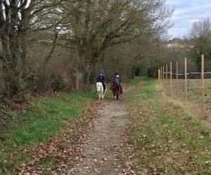 Dimanche 5 mars : balade à poney