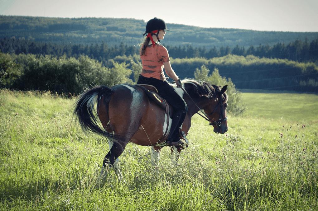 12 mars : Ostéopathie /Saddlefitting / BitFitting, Kesako?