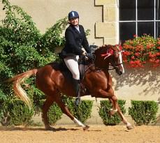 Lutmar's Joy, Championne sous la selle au National 2015